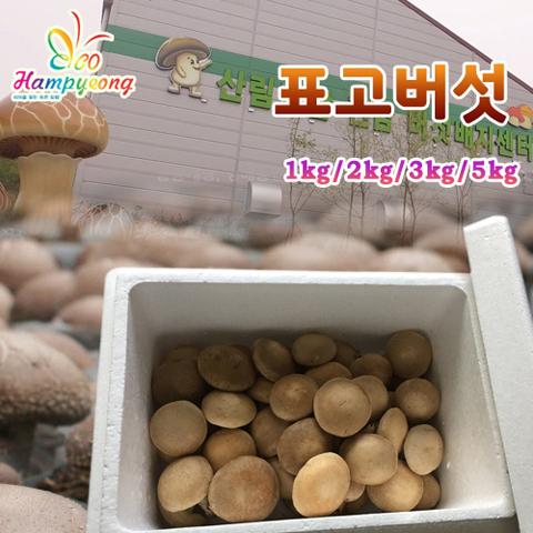 함평 표고버섯 1kg/2kg/3kg/5kg