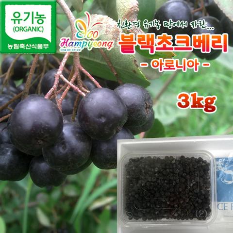 함평 블랙초크베리(아로니아) 3kg