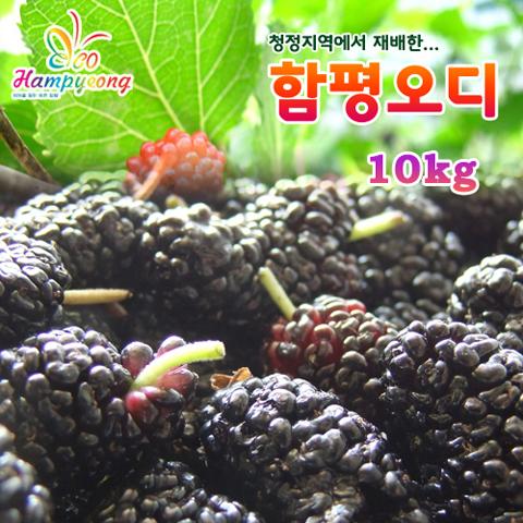 [특가] 함평오디 10kg